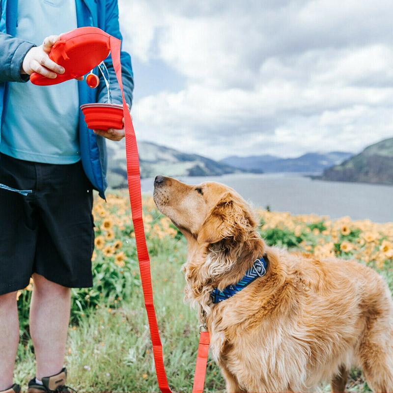 Multifunctional Dog Leash
