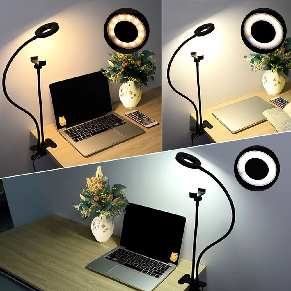 Professional 2 in 1 Selfie Ring Light with Cell Phone and Webcam Holder for Live Stream Makeup Video Recording